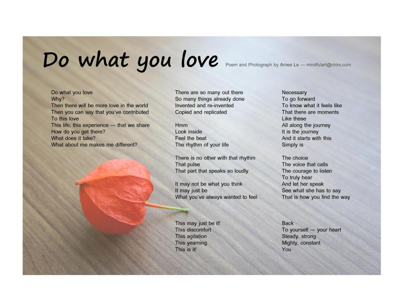 Do what you love by Amee Le